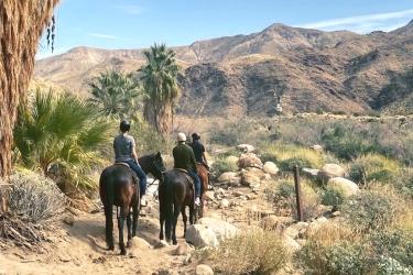 Palm Springs Horseback Riding